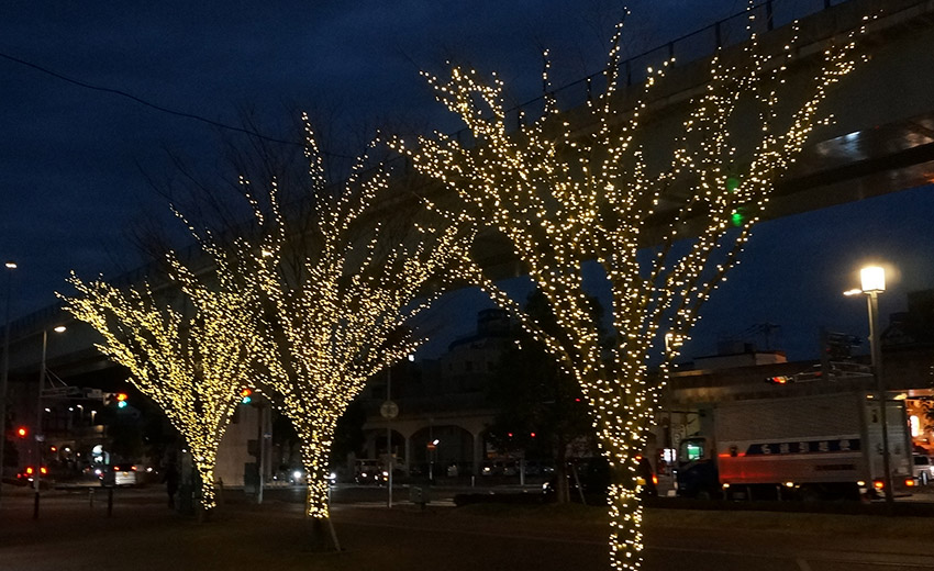 街路樹イルミネーション