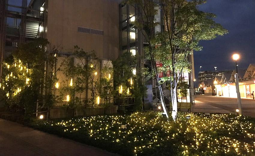 植栽イルミネーション・ライトアップ